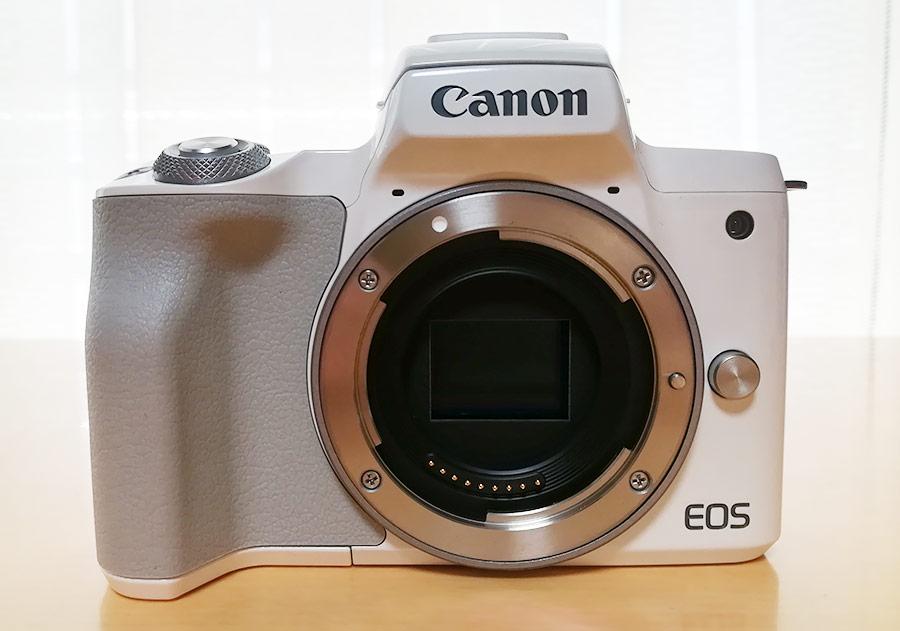 Canon EOS kissMレビュー!実際のサンプル画像あり!ペットや子供撮影、女子にもおすすめ。